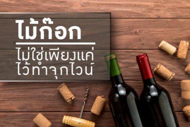 ไม้ก๊อกไม่ใช่เพียงแค่ไว้ทำจุกไวน์